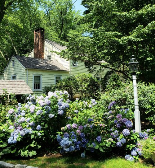 Sale 917 South Avenue - New Canaan
